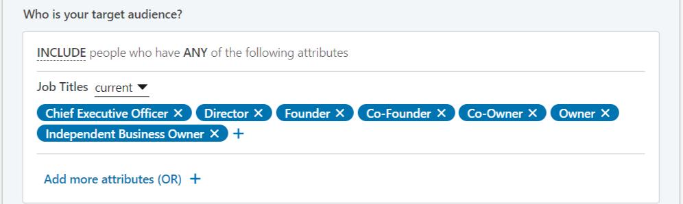 Linkedin oglaševanje primer ciljanja na lastnike podjetij